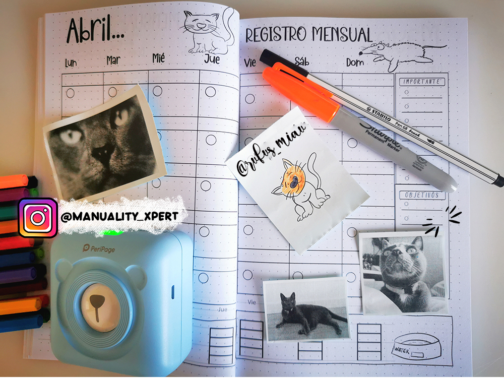 cat care journal april